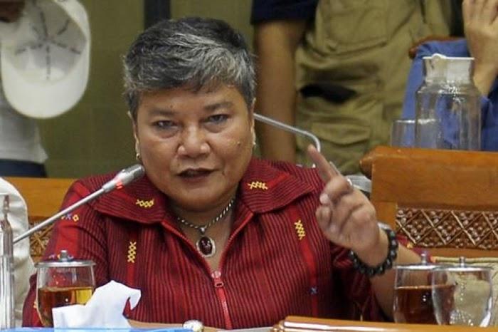 Ahmad Yani Minta Maaf Salah Sebut Nama Ribka Tjiptaning sebagai Ketua Panja RUU HIP