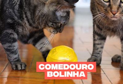 Comedouro que pode ajudar a controlar o peso do seu gato