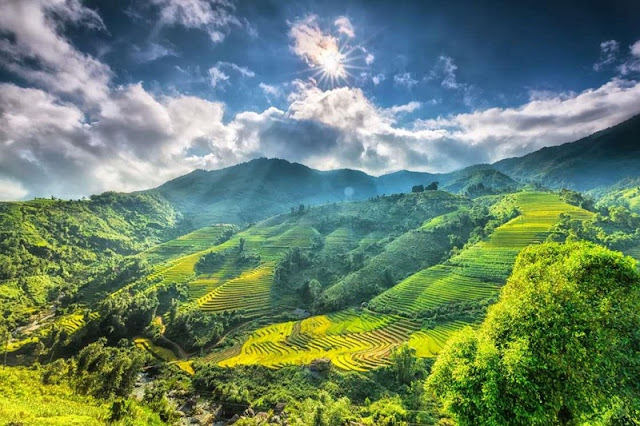 Sapa, Da Lat - Where to welcome the most beautiful spring in Asia 6