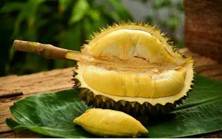 Dosis Pupuk Nasa untuk Durian