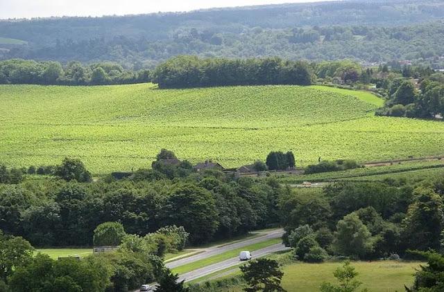Box Hill Surrey (England)