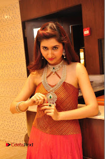 Harshada Patil Pictures at Manepally Jewellery Exclusive Diamond Collection Launch  0027.JPG