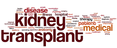 renal failure transplantation mumbai