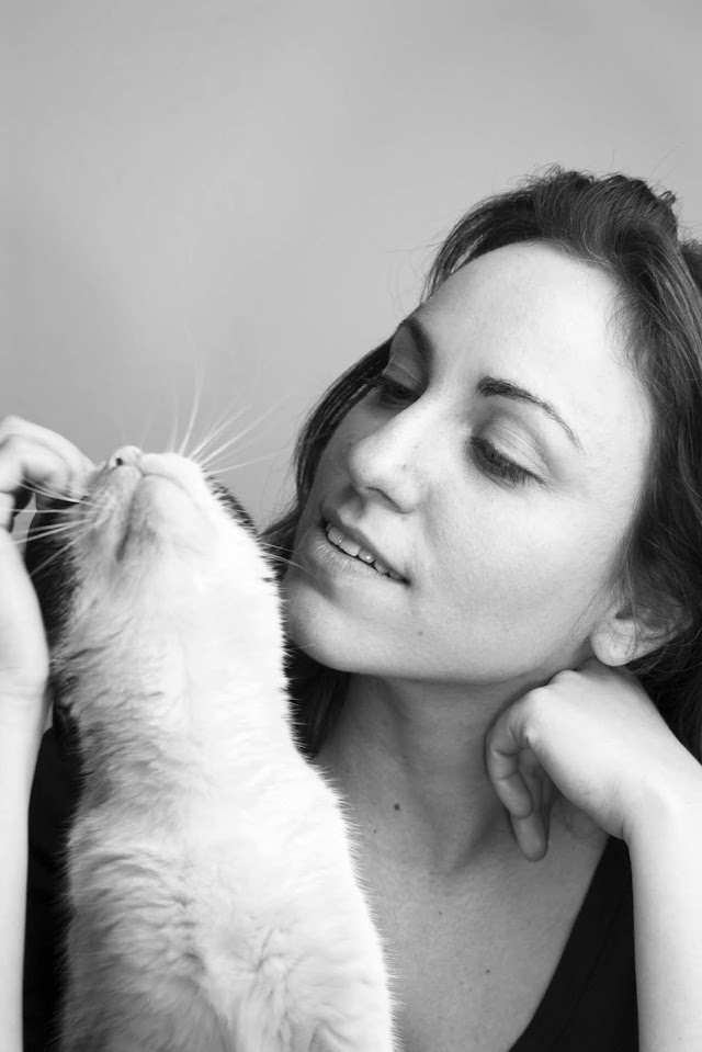Top Reasons We Love Cats