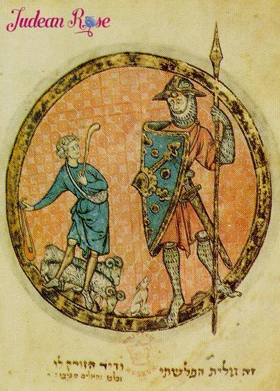 David versus Goliath Source: http://de.wikipedia.org/wiki/Bild:David_gegen_goliath2.jpg