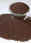 Pure Ceylon Mustard Seeds