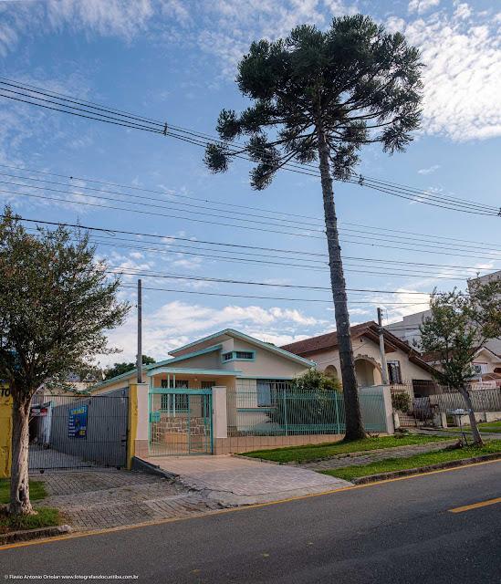 Casa com pinheiro na calçada na Rua Monte Castelo
