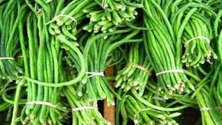 Cara Mengobati Asam Urat dengan Kacang Panjang Perancis
