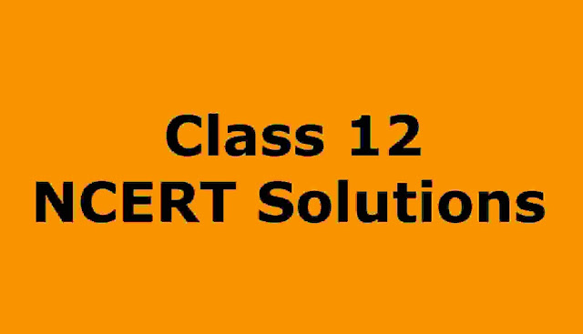 The Enemy class 12 NCERT important Question Answer Solutions