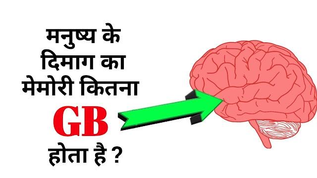 इंसान का दिमाग कितने GB का हो सकता है? Human brain storage in gb