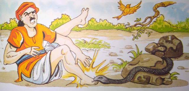 बहेलिया और साँप Latest Hindi Moral Stories For Class 5th