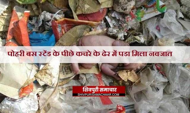 पोहरी बस स्टेंड के पीछे कचरे के ढेर में पडा मिला नवजात | Shivpuri News