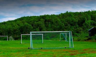 Campo de fútbol de hierba