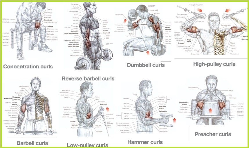 Non Weight Exercises To Build Muscle
