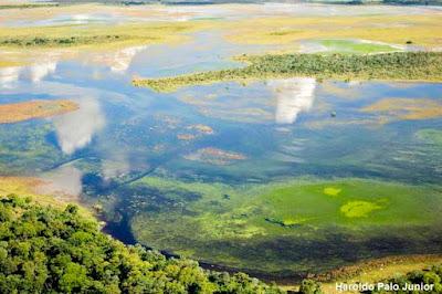 Projetos ambientais, apoio financeiro, fundação grupo boticário de proteção a natureza, conservação da natureza, meio ambiente, iniciativa, conservação, biodiversidade, pantanal, unidade de conservação, extinção, animais em extinção, natureza