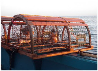 Traditional Wooden Lobster Pot