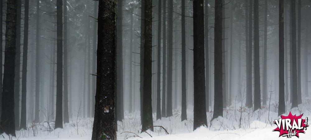 A temperatura mais fria já registrada foi de -97°C
