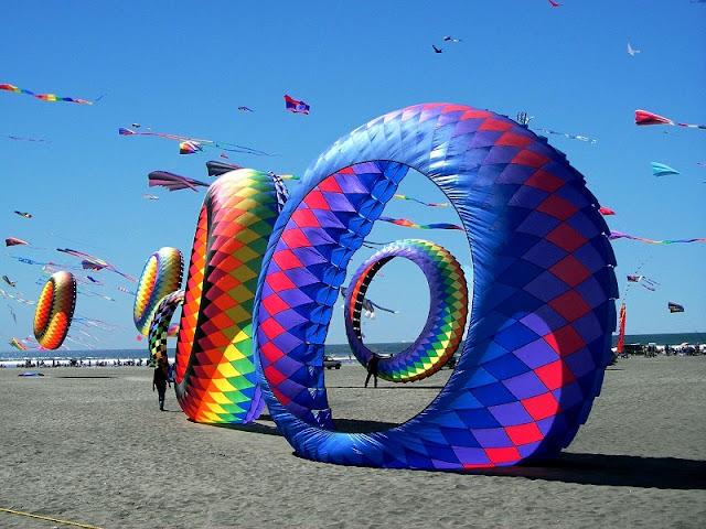 International Kite Festival opens in Vung Tau 1