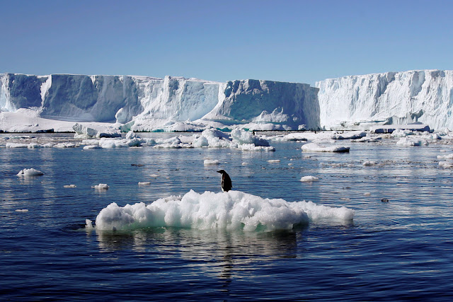 Antarctica likely to drive rapid sea-level rise under climate change