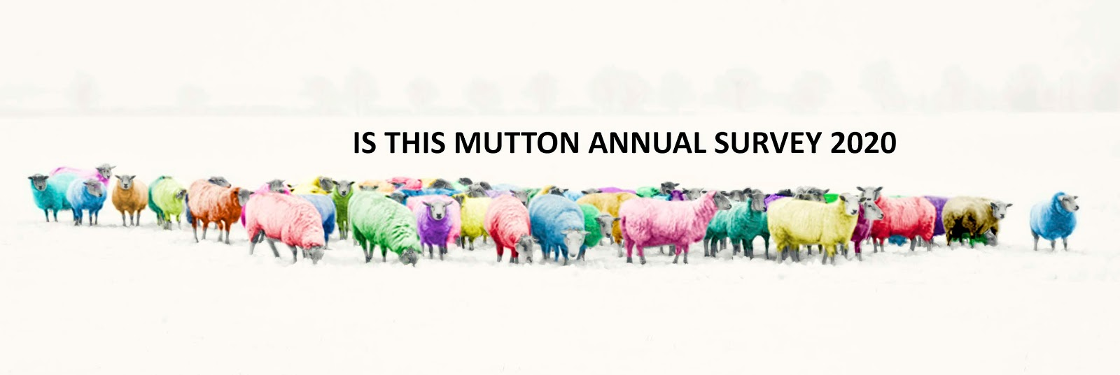 It's time for women over the age of 50 to make their voices heard. Take part in the 2020 annual Is This Mutton? survey on attitudes to ageing, fashion and beauty.