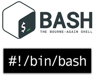 Download a list of files using a shell (bash) script.