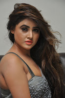 Actress Sony Charistha Latest Pos in Silver Saree at Black Money Movie Audio Launch  0004.jpg