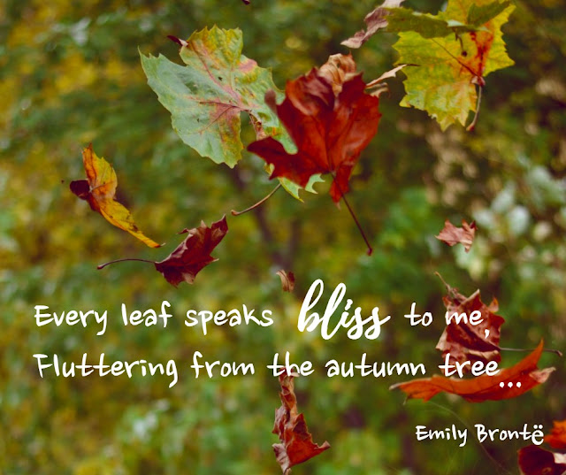 "quote from Emily Brontë ""Every leaf speaks bliss to me, Fluttering from the autumn tree..."" falling leaves in the background"