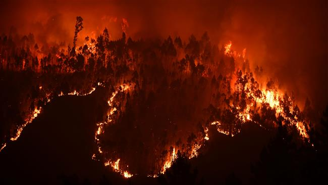 Portuguese firefighters battling raging blazes from forest fire