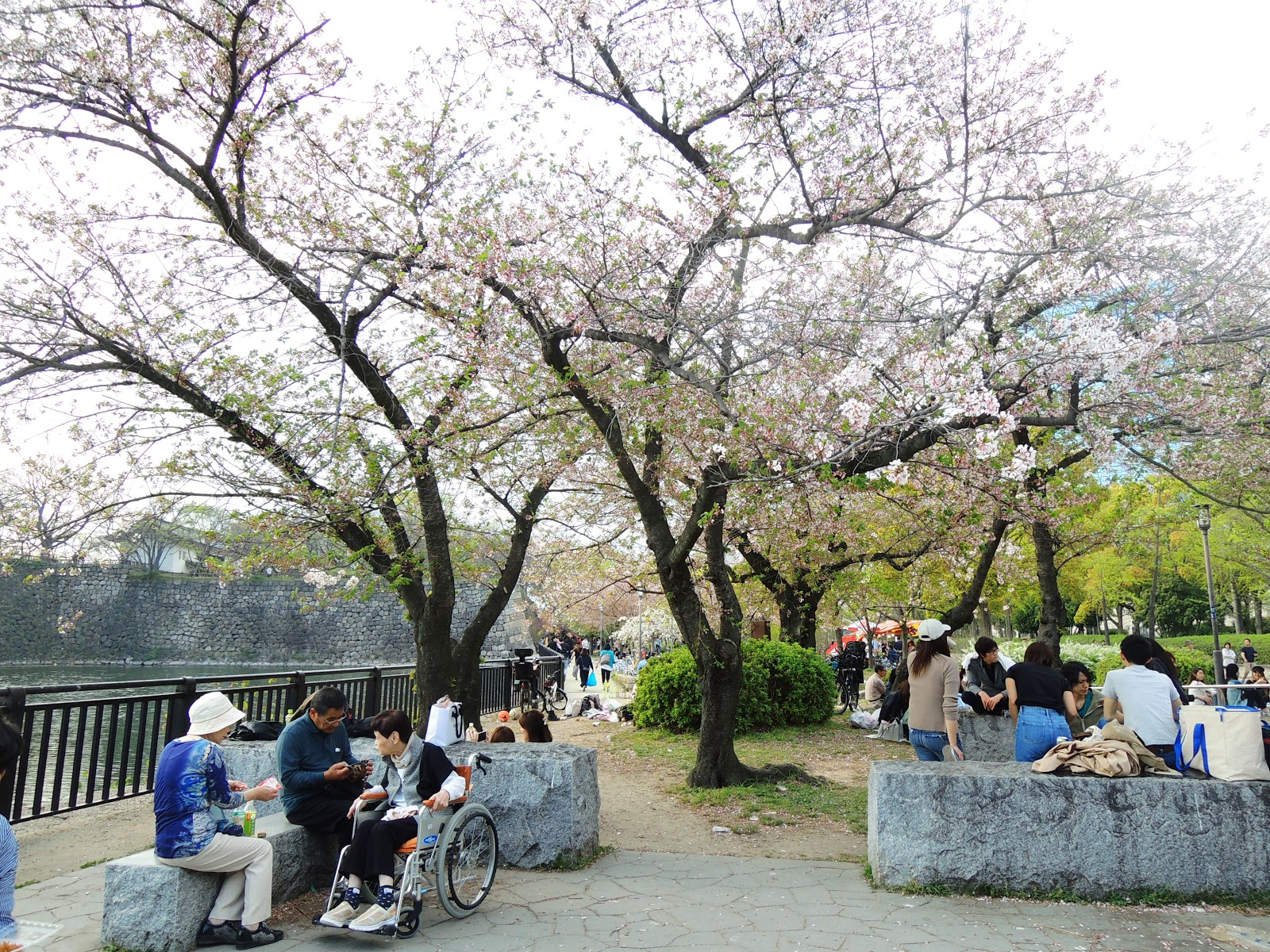 公園 大阪 城