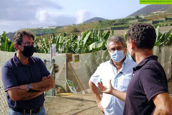 """José Adrián Hernández: """"El cultivo ecológico en La Palma es viable y factible, es el camino que tenemos que recorrer"""""""
