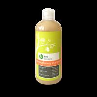 BEE BOTANICS Strengthening Shampoo with Royal Jelly