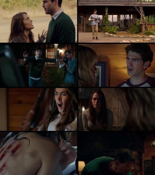 Cabin Fever 2016 English 720p BRRip