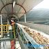 Tài liệu hướng dẫn Sản xuất sạch hơn ngành sản xuất tinh bột sắn