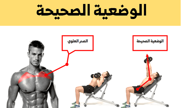 تمارين الصدر