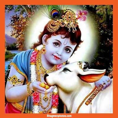 Laddu Gopal Pics