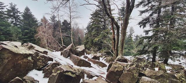 Najwyższy szczyt województwo Świętokrzyskiego