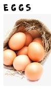 Top 7 best Protein rich foods