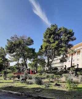 Manutenzioni al giardino dell'Ospedale Binaghi