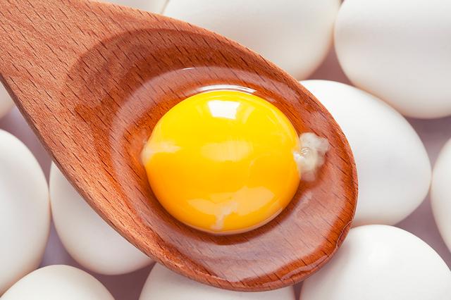 Os 7 melhores tipos de proteína em pó