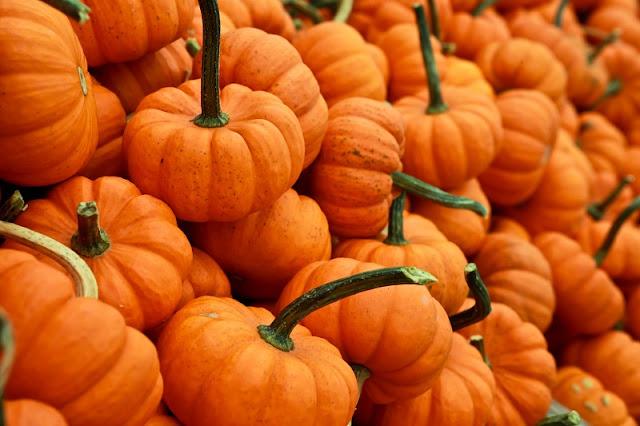 Algunos-trucos-para-tomar-buenas-fotos-en-Halloween