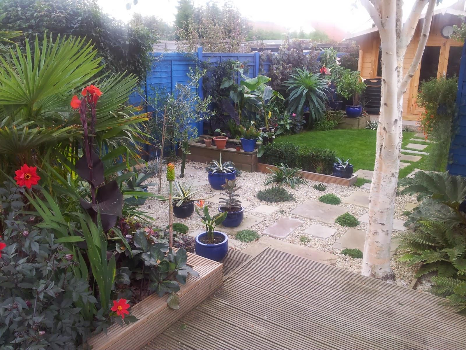 Award winning tropical effect garden