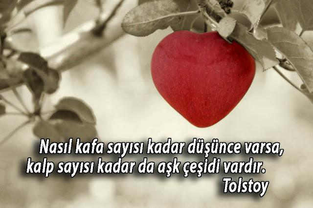 aşk ile ilgili sözler, aşk sözleri kısa, aşk sözleri uzun, aşk mesajları, en güzel aşk sözleri, etkileyici aşk sözleri