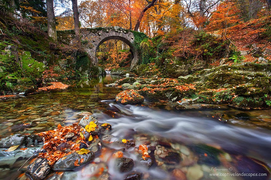 Tollymore, UK - 20 Mystical Bridges That Will Take You To Another World