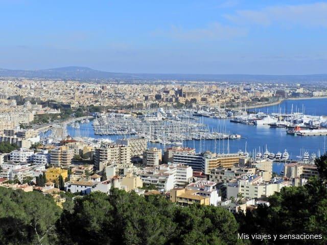 Qué ver en Palma de Mallorca. 12 lugares que no debes perderte en la ciudad