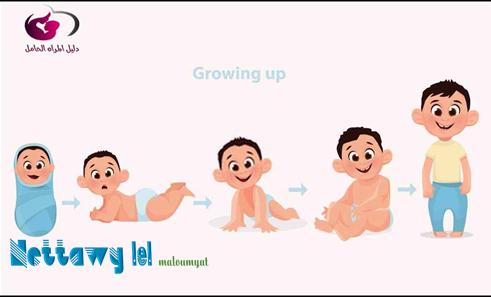علم النفس التنموي