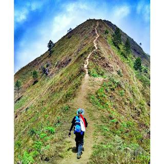 Referensi Jalur Pendakian Gunung Andong Untuk Anda