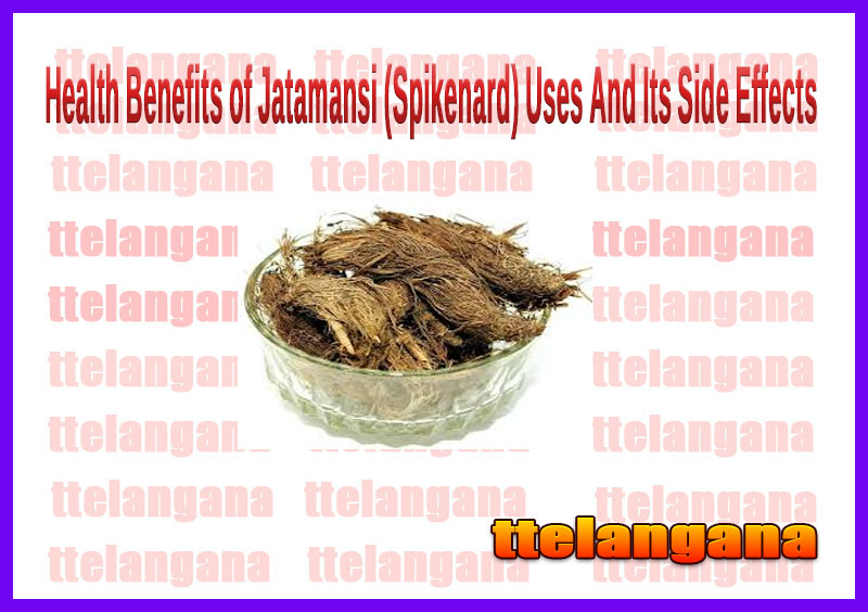 Health Benefits of Jatamansi (Spikenard) Uses And Its Side Effects