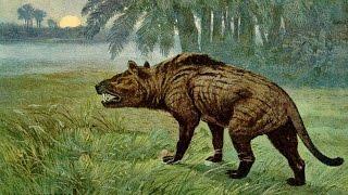 El animal que habían buscado los paleontólogos
