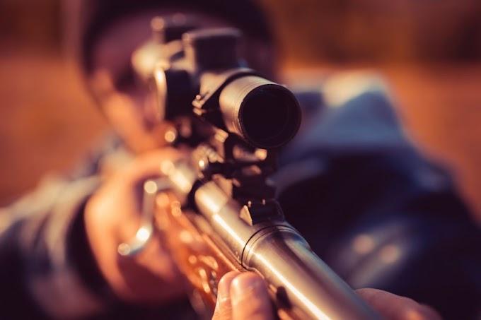 Orvvadászok ellen indult eljárás, lőszert és fegyvereket foglaltak le