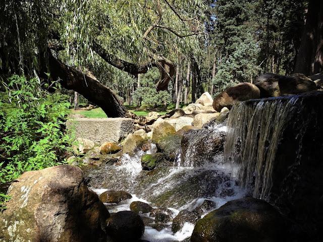 Sztuczny wodospad w Parku Skaryszewskim, Piękne zdjęcie